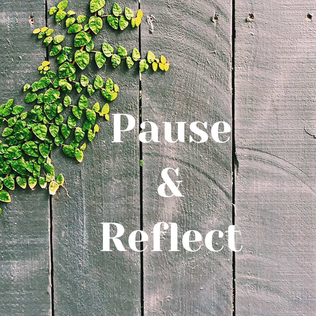 https://suehawkes.com/wp-content/uploads/2020/04/Pause-Reflect.png